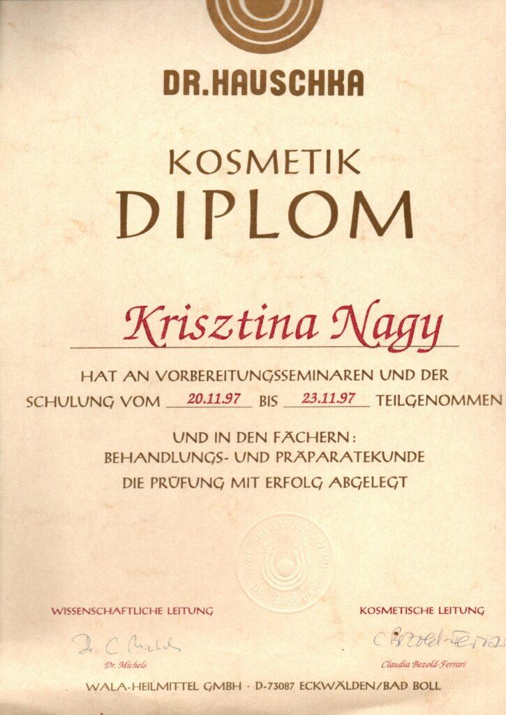 2_Kosmetik_Diplom
